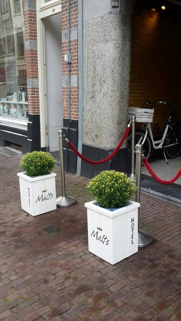 Foto B&B Hotel Malts in Haarlem, Slapen, Bed & breakfast - #7