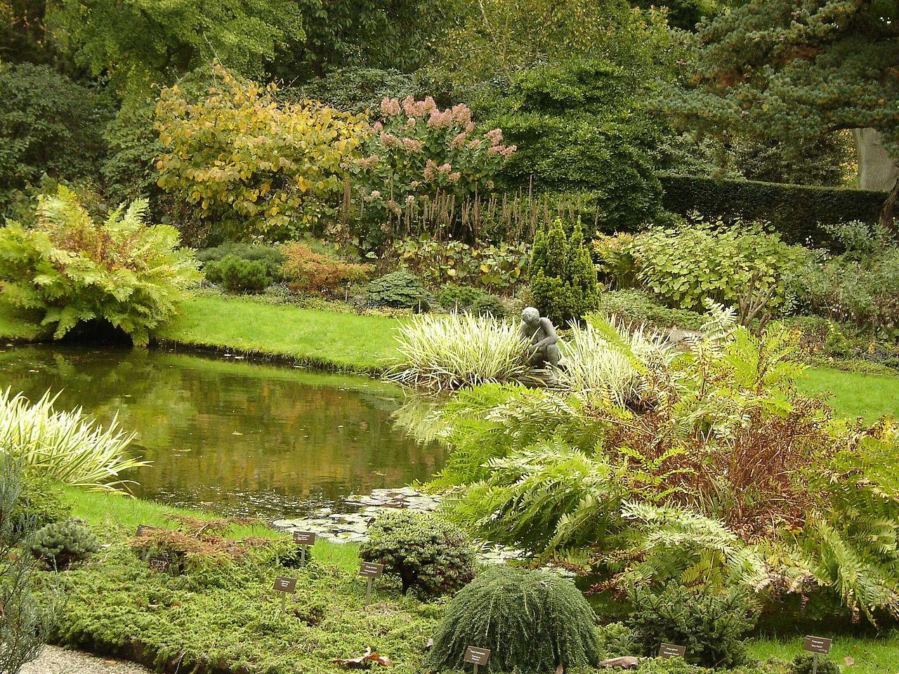 Zien buurt rotterdam trompenburg tuinen arboretum for De tuinen rotterdam